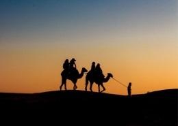 Balade en chameau dans le désert d'Agafay au couché du soleil