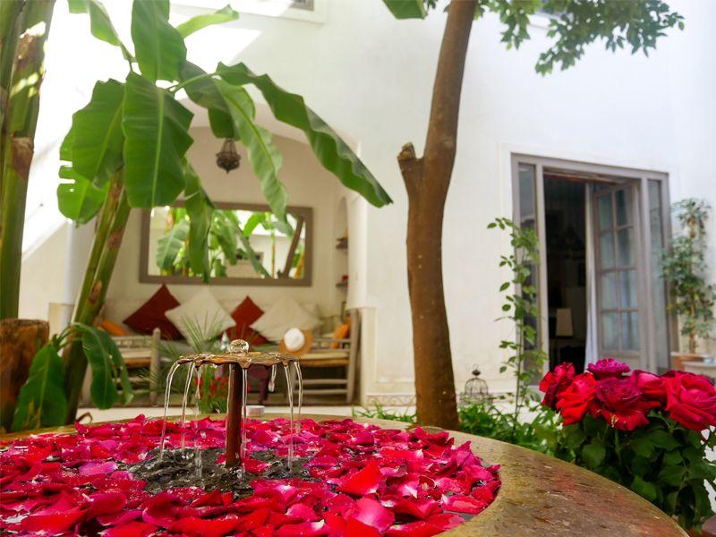 Photo d'une fontaine avec des pétales de rose dans le patio d'un riad à Marrakech